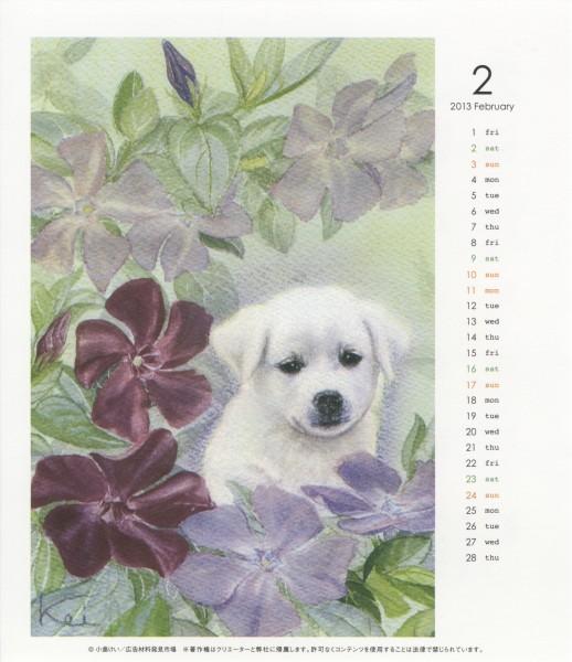 2013年2月子犬と姫蔓日々草