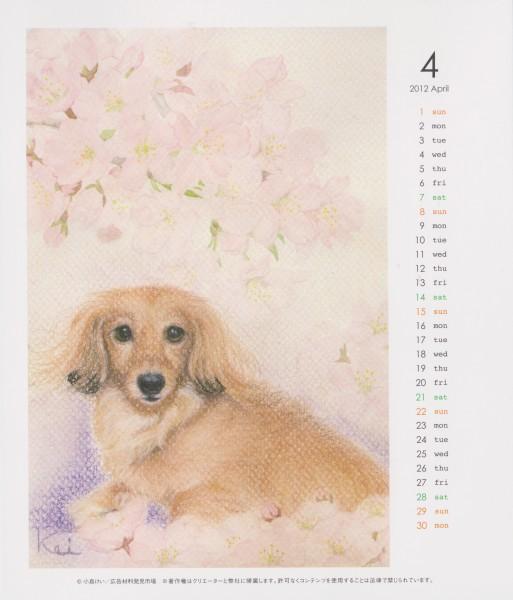 2012年4月かりんちゃんと桜