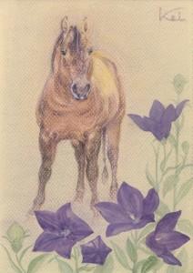 12_8_10馬と桔梗 001