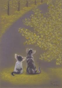 12_7_28子猫の後ろ姿と銀杏 001